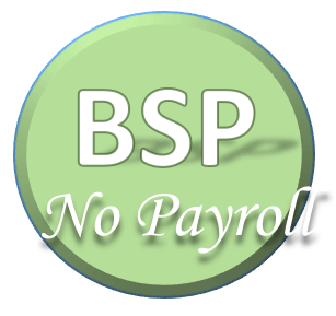 Bsp with no Payroll